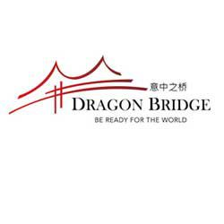 DragonBridge.it