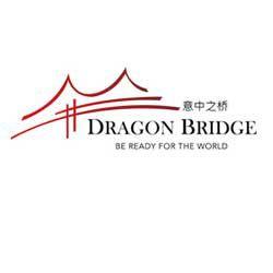 DragonBridge.it